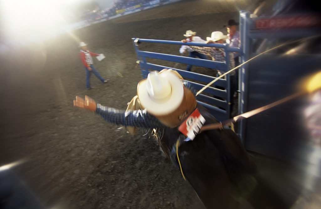 Reno Rodeo Near Sparks NV