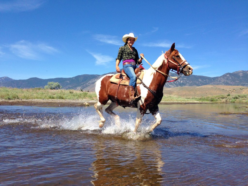 Carson Valley Horseback Riding