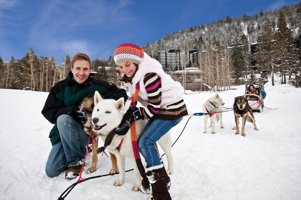 Squaw Valley Dog Sledding Truckee CA