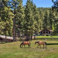 Ranch & Equestrian